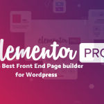 Training on Elementor Pro Page Builder